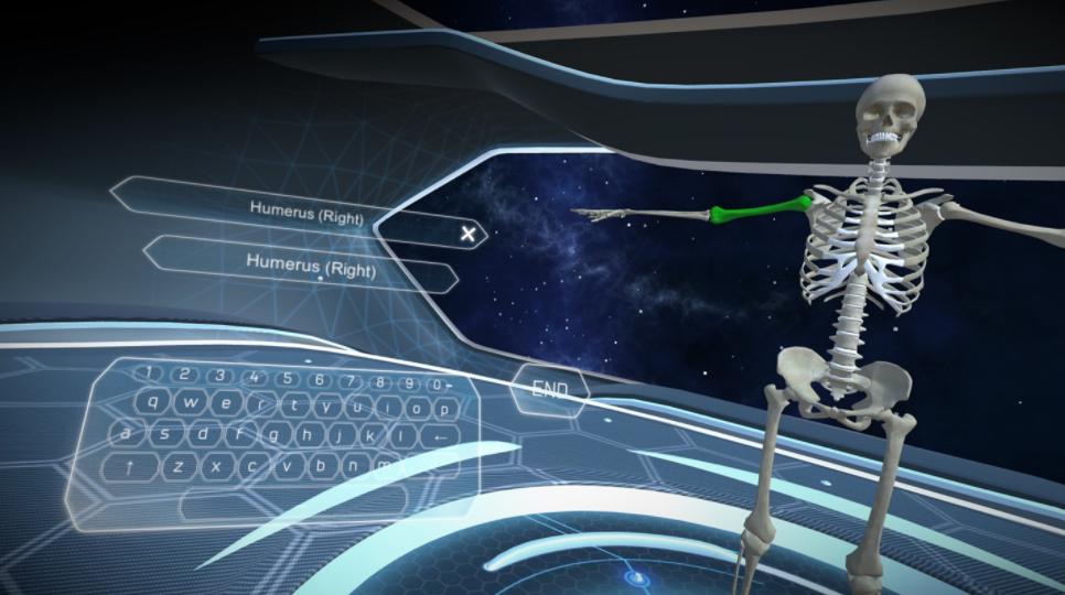 Ukázka Human Anatomy VR